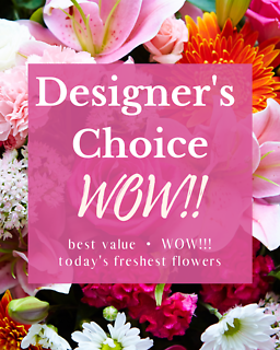 Designer\'s Choice - WOW!