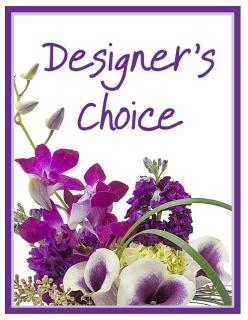 Designer\'s Choice