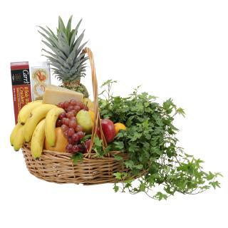 Fabulous Fruit and Plant Basket